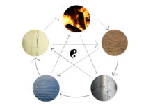 5 Elements of TCM: From the ActiveHerb.com blog