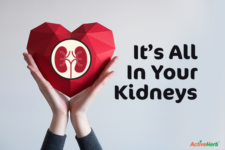 Sexual Wellness In Chinese Medicine: It's All In Your Kidneys